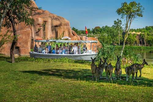 river safari nam hội an điểm đến lôi quấn 2